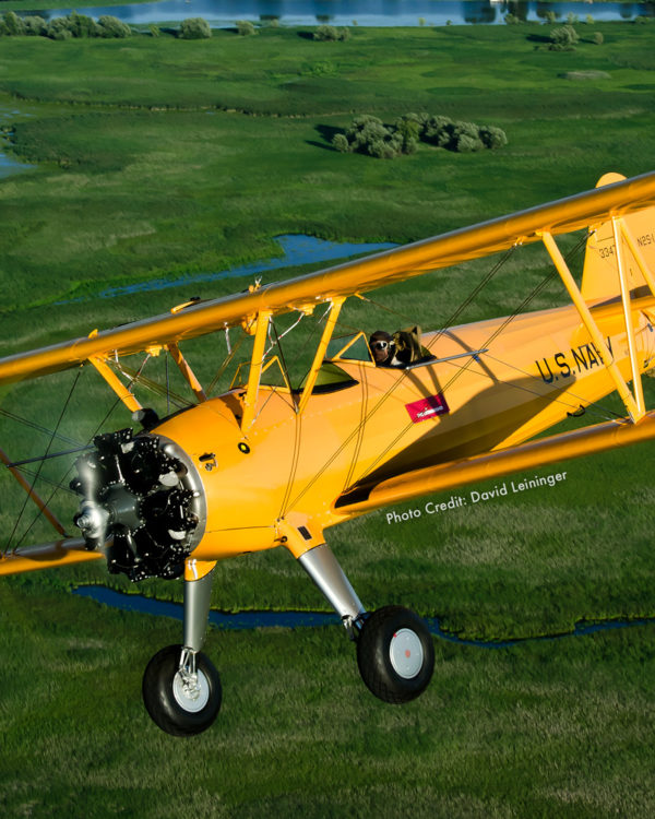 Bush Stearman